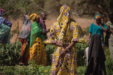 Women farmers in Senegal